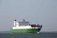 BALTICA (angelo vlassenrood) Tags: ship vessel nederland netherlands photo shoot shot photoshot picture westerschelde boot schip canon angelo walsoorden cargo baltica roro