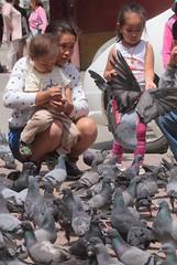 Monastery Pigeons (peterkelly) Tags: digital asia gadventures transmongolianadventure canon 6d gandanmonastery mongolia ulaanbaatar woman mother daughters pigeons pigeon birds
