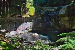 Pool in the Moss Garden (Geoff Main) Tags: australia canon6d canonef24105mmf4lisusm carnarvongorgenationalpark gorge landscape luminar mossgarden nationalpark queensland rockpool