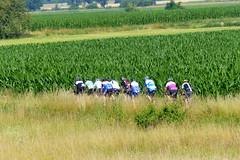 Zehnerpack (ivlys) Tags: erfelden deich dyke feld field radfahrer biker zehn ten landschaft landscape natur nature ivlys