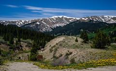 Rocky Mountains (San Francisco Gal) Tags: rockymountains mosquitomountains landscape tree conifer aspen dandelion gate road cloud