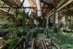 Uncharted (maxmene70) Tags: urbex decay nature architecture factory abandoned vegetation canon light dark sun ray tree foliage
