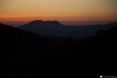 bosco chiesanuova 20 (formicacreativa) Tags: boscochiesanuova montilessini lessinia verona sentiero passeggiata albero legno foresta animale campo fiore tramonto cielo