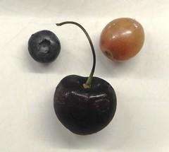 Healthy Sweet Snacks (Joseph Hollick) Tags: refreshments macromondays fruit