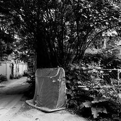 Hibernation estivale... (woltarise) Tags: ruelle montréal plateau montroyal quartier but hockey saison estivale repos iphone7