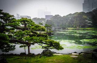 Hama Rikyu Teien Gardens, Tokyo 2006