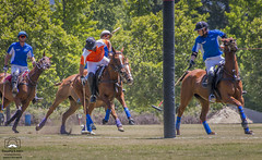 Polo Match #2 (allentimothy1947) Tags: california places sonomacounty ball field goal grass horse lawn mallet oakmont polo rider sports hit pacific united saddle santa rosa sonoma county stregis clubs drive hats jersey uniforms whip