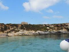 DSCN1661 (pasinifam) Tags: favignana isola dei gabbiani