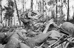 DAK TO 1967 - Hill 875 - Soldier Dodging Through Maze Of Jungle (manhhai) Tags: asia few historicevent northamericanhistoricalevent people southvietnam southeastasia unitedstateshistoricalevent vietnam vietnamwar19591975