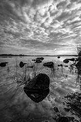 DSCF7259 (lukmanism) Tags: fujifilm xt20 samyang12mmf2 samyang älmhult sweden sunset landscape lake