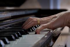My wife playing piano ... (alvarolsalmeida) Tags: piano playingpiano playing music instrument musicinstrument classic fritzdobbert 18135 sony a6500 fav100 sonyalpha sonya6500 fav150 fav200 pianolovers