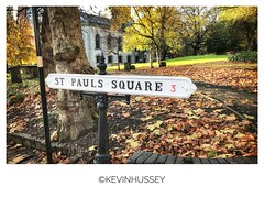 Leaves in St Paul's Square (hussey411) Tags: photography photographer iphonephotography birmingham uk