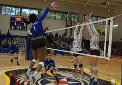 2018 Armed Forces Volleyball Championship (Joint Base Lewis McChord) Tags: 2018 armedforces volleyball championship hurlburtfield fla army navy airforce coastguard uscg usaf unitedstatesofamerica