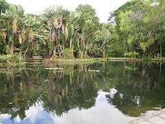 P1012265 (darekmercury) Tags: brasil rio de janerio iguazu murales