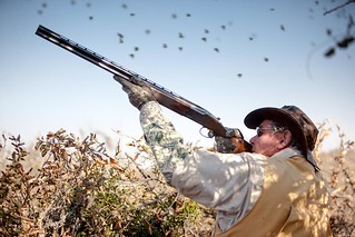 Argentina Luxury Dove Hunting 47