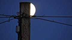 Powered By The Moon. June 2018 (SimonHX100v) Tags: moon moonlight fullmoon lunar telegraph pole telegraphpole night nighttime nightscene nightimages nightphotography nightshot nightshooters moonrise