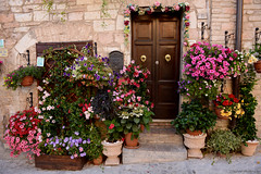 this is Spello (Marano Marco) Tags: marano maranomarco perugia borghi borghiumbria umbria spello cittaspello fiori porte doors flower flowers nikon nikond800 d800