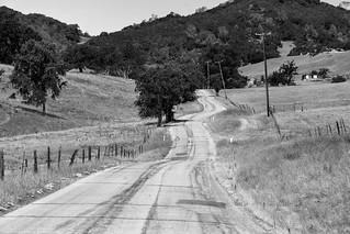Rural Road _ bw