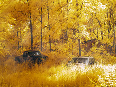 Somewhere...I don't know where...the dusty dirt road edit. (bill.d) Tags: michigan unitedstates us infrared 580nm abandoned ruraldecay ruralmichigan barrycounty truck house woods