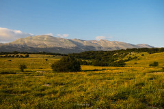 Podveležje, Bosnia and Herzegovina (HimzoIsić) Tags: landscape nature mountain mountainside grassland grass sky outdoor field ngc