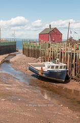 Hall's Harbour (barachois50) Tags: hallsharbour novascotia lowtide tides