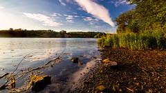 Linlithgow--7 (Jistfoties) Tags: linlithgow linlithgowpalace linlithgowloch unioncanal scotland westlothian landscapes