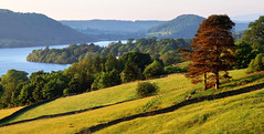 Spring evening at the Lake (PJ Swan) Tags: ullswater lake district england evening light cumbria golden hour great britain spring primavera fields