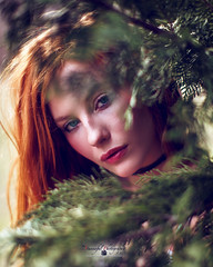 Sara (Stunnaful-Photography) Tags: headshot portrait blur bokeh stunnafulphotos photography art fashion redhead woman green trees outdoors life dreams modeling canon5dmarkiii