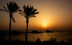 IMG_4727 (radomirmor) Tags: sunset water sea sky tree sun 6d canon egypt