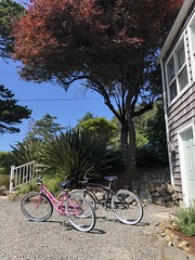 Beach bikes, the Inn at Arch Cape, Oregon Coast (coltera) Tags: archcape oregoncoast oregon cannonbeach cannonbeachhotels