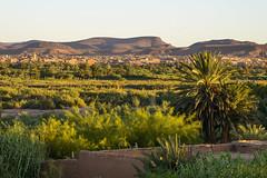 Ouarzazate in Sunset (Darren Poun) Tags: ouarzazate morocco africa arabic arab desert oasis sunset traveling landscape nature nikon d800 d800e nikkor105mm f14