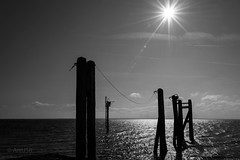 Sun Reflection (ARTUS8) Tags: hafen blackwhite nikon24120mmf40 flickr meer nikond800 sonnenaufuntergang