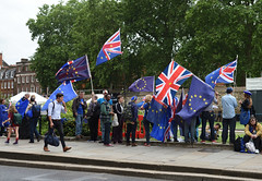 Img634656nxi_conv (veryamateurish) Tags: london westminster parliament housesofparliament abingdonstreet demonstration protest eu europeanunion brexit flags