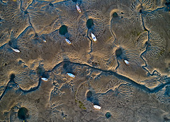 High Five (Solent Poster) Tags: dji phantom 4 pro plus p4p landscape seascape emsworth hampshire abstract lowtide aerial drone djiphantom4proplus