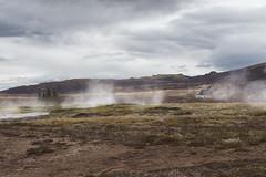 Geothermal Area 2 (pni) Tags: tree view landscape sky cloud field steam strokkur geysir geyser goshver is18 iceland ísland pekkanikrus skrubu pni