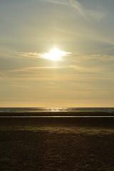 Sunset. Ainsdale Beach (Michael_Lock) Tags: dogs staffy terrier labrador beach sunset ainsdale merseyside