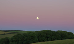 Moonrise (Andy.Gocher) Tags: andygocher canon100d sigma18250 canon100dsigma18250 uk wales greatbritain pembrokeshire westwales landscape moon fullmoon countryside coastalpath green