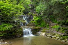 Magical Place (maureen.elliott) Tags: landcape waterfall trees gorge newyorkstateparks buttermilkfallsstatepark hiking waterflow magical rock rockforms newyorkfingerlakesregion nature stream river creek