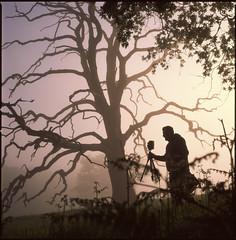 Kris and his TLR (steve-jack) Tags: hasselblad 501cm 80mm cb fuji velvia 100f tree mist 6x6 mf medium format film e6 tetenal kit epson v500