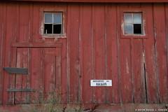 Eyes on the Barn (David J. Greer) Tags: bcpa photo workshop adventure travel palouse washington evening patterns texture barn wood red windows door side