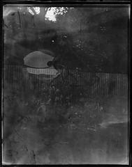 Intrepid (8x10) 2018 06 18 (Sibokk) Tags: 8x10 bw camera film intrepid mono photography scotland uk urban xray contactprint fogatron edinburgh
