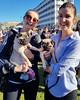 Big dog walk with Lots of Dogs (nikitarawnsley) Tags: dog wellington waitangipark walk lotsofdog bigwalkwithlotsofdogs pug