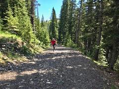 Moose Mountain Hike - Ben keeps at it (benlarhome) Tags: kananaskis alberta canada braggcreek moosemountain hike hiking trek trekking trail path