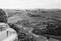renza and her terrace and all that good food... (bmxhag) Tags: agfaapx400 bw italy matthewdoerr may2018 olympusom2n blackandwhite agfa italia piedmont piemonte barolo wine vinyards terrace landscape views countryside hills plustek opticfilm scan analog 35mm film