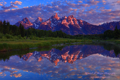 Sunrise Grand Tetons Reflected in the Schwabackers Landing Beaver Ponds in Grand Teton National Park in Wyoming (@randalljhodges) Tags: sunrise grandtetons schwabackerslanding beaverponds reflection snakeriver grandtetonnationalpark rockies rockymountains wyoming travel destination usa unitedstates