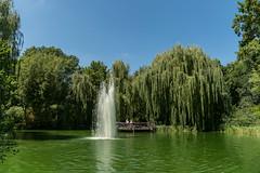 Volkspark Friedrichshain (Berlin-Knipser) Tags: volksparkfriedrichshain berlin deutschland germany friedrichshain sonya6300 sel18135