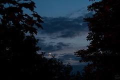 Crescent Moon & Venus / @ 55 mm / 2018-06-16 (astrofreak81) Tags: mond venus night crescent dresden moon