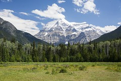 Mount Robson (Plonq) Tags: mountain bc britishcolumbia robson mountrobson canada nature grass trees sky clouds rock snow