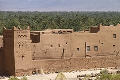 2018-4329.jpg (storvandre) Tags: morocco marocco africa trip storvandre sahara draa valley landscape nature desert berber sand dunes