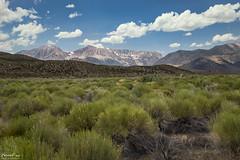 Mono Lake Desert (NormFox) Tags: brush california clouds desert hills landscape monolake mountains outdoor rural sage sky leevining unitedstates us